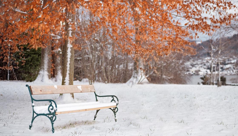 Stoppen Sie für einen Moment - Bank im Schnee